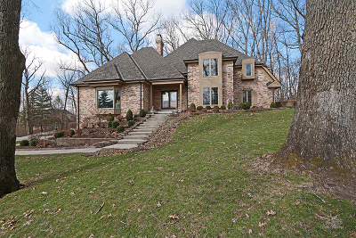 Homer Glen Single Family Home For Sale: 12952 West Red Oak Court