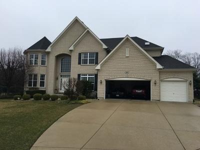 Bloomingdale Single Family Home For Sale: 197 Salt Lake Drive