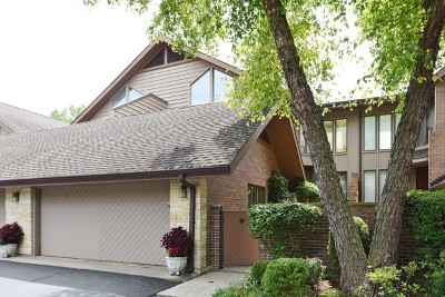 Hinsdale Condo/Townhouse For Sale: 1202 Hawthorne Lane