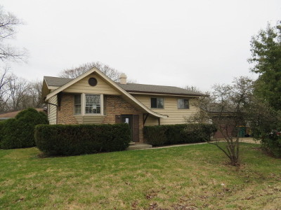 Winfield Single Family Home For Sale: 0s459 East Street