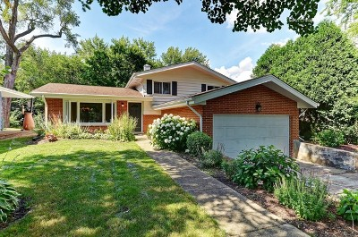 Clarendon Hills Single Family Home For Sale: 440 Naperville Road