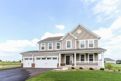 Plainfield Single Family Home Contingent: 12407 Dublin Lot#100 Lane