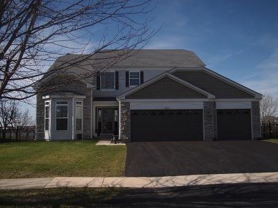 Bolingbrook Single Family Home For Sale: 1632 Prairieview Boulevard
