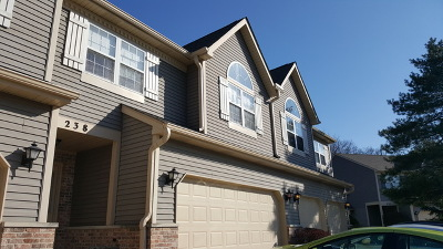East Dundee Condo/Townhouse Contingent: 238 Dunridge Circle