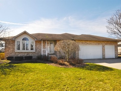 New Lenox Single Family Home Contingent: 704 Ridgefield Road