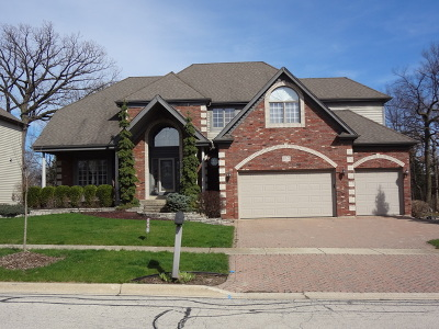 Lemont Single Family Home For Sale: 10825 Christopher Drive