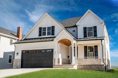 Elmhurst Single Family Home For Sale: 805 South Colfax Avenue