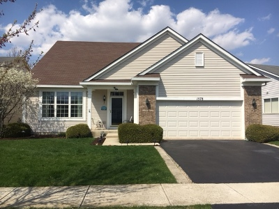 Romeoville Single Family Home For Sale: 1578 Muskegon Way