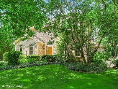 Burr Ridge Single Family Home For Sale: 573 60th Place