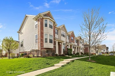 Winfield Condo/Townhouse Contingent: 0n062 Forsythe Court