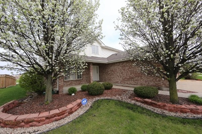 Matteson Single Family Home For Sale: 4712 Aylesbury Avenue