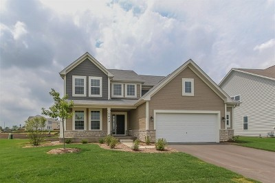 Joliet Single Family Home Contingent: 1409 Barberry Lot#451 Way