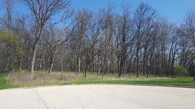 Harvest Glen Residential Lots & Land Contingent: 24913 North Autumn Ridge