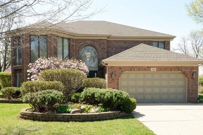 Mount Prospect Single Family Home For Sale: 119 West Lonnquist Boulevard
