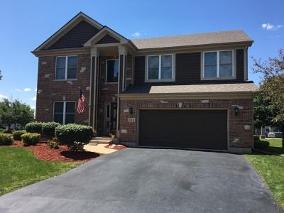 Lake In The Hills Single Family Home For Sale: 522 Camargo Club Drive