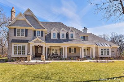 Glen Ellyn Single Family Home For Sale: 901 Maya Court