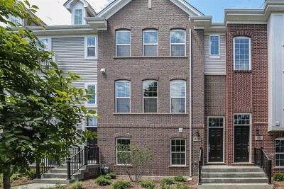 Naperville Condo/Townhouse For Sale: 816 Paisley Lot #11.04 Court