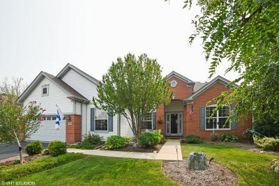 Huntley Single Family Home Price Change: 13055 Illinois Drive