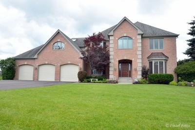 Sleepy Hollow Single Family Home For Sale: 17 River Ridge Drive