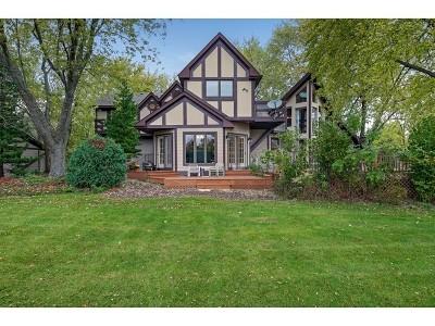 Burr Ridge Single Family Home Contingent: 16w185 89th Street