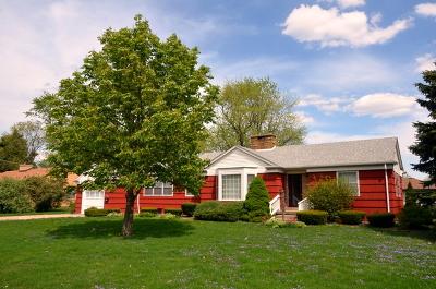Lansing  Single Family Home For Sale: 17641 Henry Street