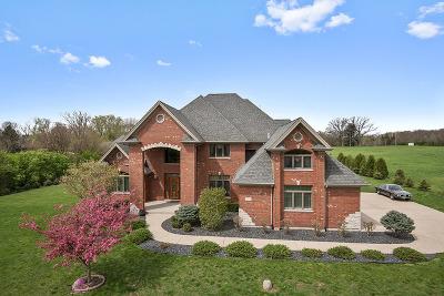 Homer Glen Single Family Home For Sale: 14344 Dixon Lane