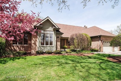 Addison Single Family Home For Sale: 463 North Clubview Court