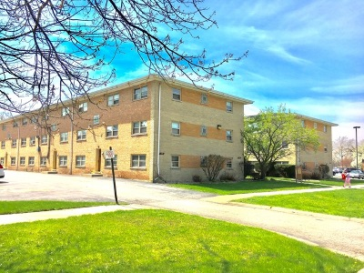 Calumet City Multi Family Home For Sale: 117 167th Street