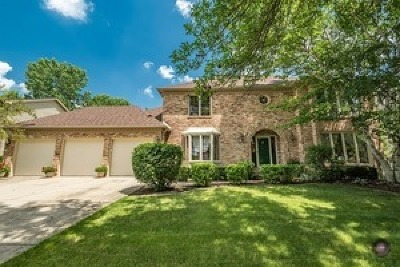 Naperville Single Family Home For Sale: 909 Turnbridge Circle