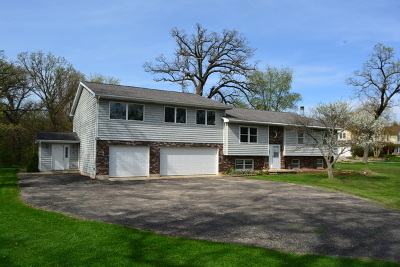 Hampshire Single Family Home For Sale: 45w962 Plank Road