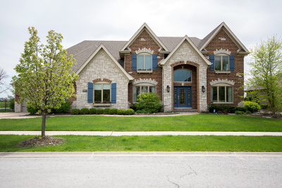Orland Park Single Family Home For Sale: 10715 Millers Way