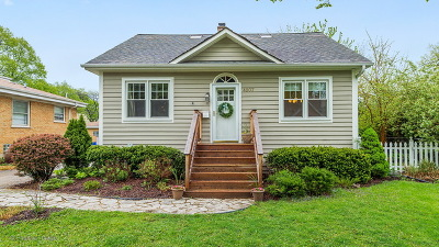 Downers Grove Single Family Home For Sale: 4907 Bryan Place