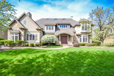 Geneva Single Family Home For Sale: 0s066 Mathewson Lane
