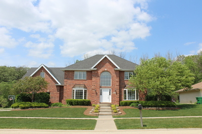 Homer Glen Single Family Home For Sale: 15505 Twin Lakes Drive