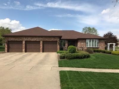 Mokena Single Family Home For Sale: 11534 Hillside Lane