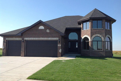 New Lenox Single Family Home For Sale: 2919 Brett Drive
