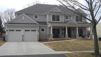 Monee Single Family Home For Sale: 10821 Saddle Drive