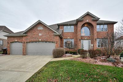 Mokena Single Family Home For Sale: 19949 Red Oak Drive