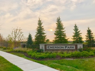 Naperville Condo/Townhouse Contingent: 2967 Madison Lot #29.04 Drive