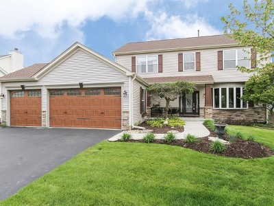 North Aurora Single Family Home For Sale: 374 Timber Oaks Drive