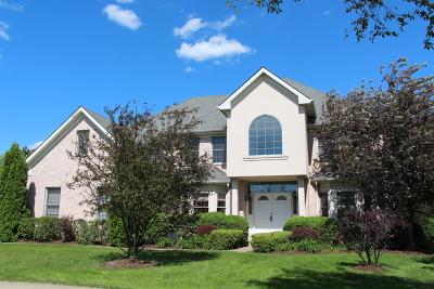 Burr Ridge Single Family Home For Sale: 6718 Fieldstone Drive