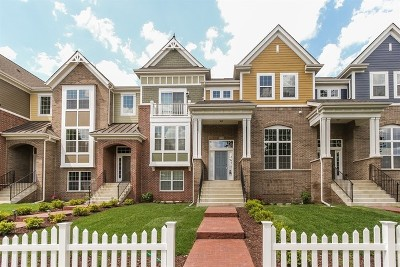 Naperville Condo/Townhouse Contingent: 4186 Royal Mews Lot#2.04 Circle
