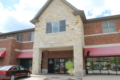 Bartlett Condo/Townhouse For Sale: 241 South Main Street #204