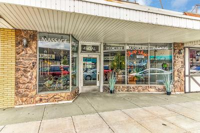 Lansing Commercial For Sale: 3322 Ridge Road