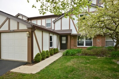 Winfield Condo/Townhouse Contingent: 0n703 Bedford Lane