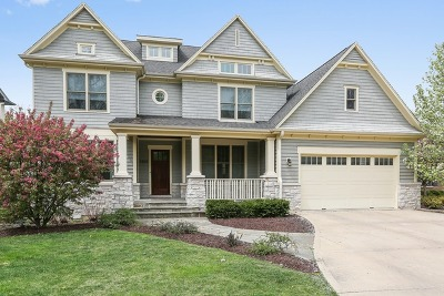 Downers Grove Single Family Home For Sale: 6122 Plymouth Street