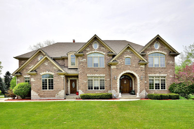 Bensenville Single Family Home Contingent: 17w320 Forest View Drive