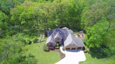 Elburn Single Family Home For Sale: 42w823 Clover Hill Lane