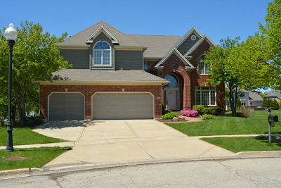 South Elgin Single Family Home Contingent: 828 Chasewood Drive