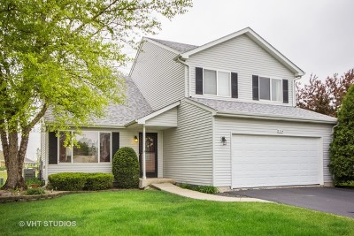 Will County Single Family Home Re-activated: 2304 Red Hawk Drive